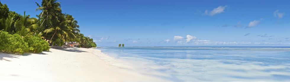 Beachkit Beach Sombrillas